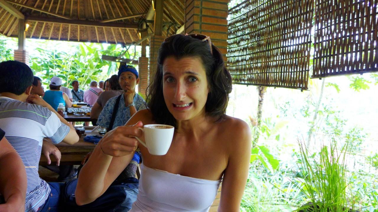 Indonesian Poop Coffee