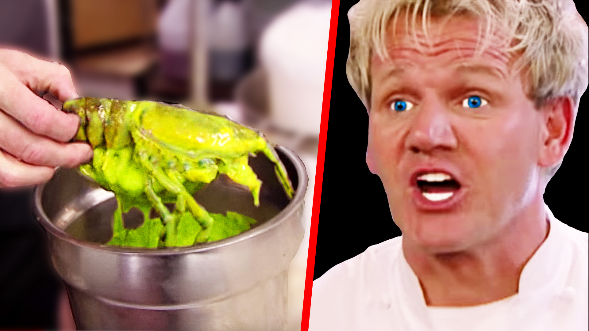 Gordon Ramsay Shuts Down the Kitchen - Kitchen Nightmares