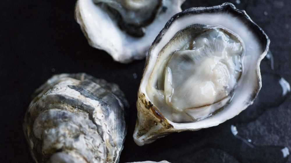 raw oysters can kill you top 10 foods that can kill you