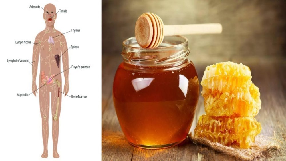 raw honey can kill you top 10 foods that can kill you