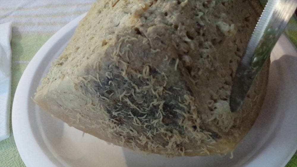casu marzu cheese that can kill you