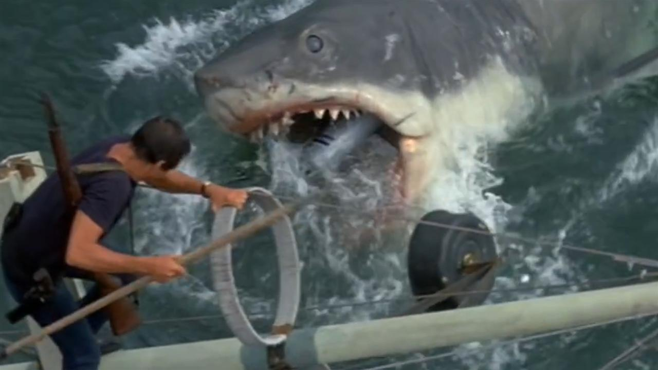 The most famous shark in movie history.