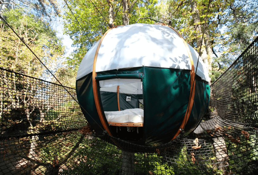 4 nest
