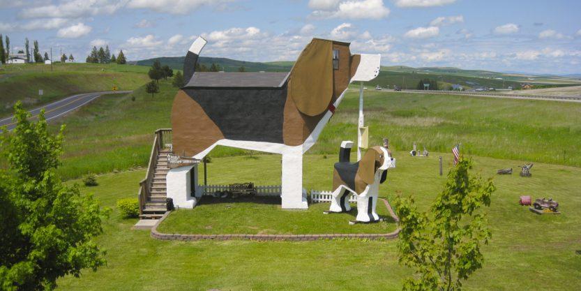 6 dog house