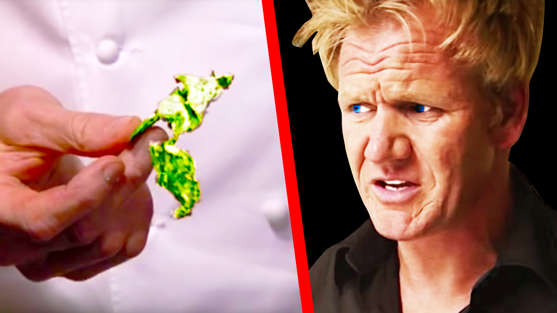 Gordon Ramsay disgusted by filthy fridges