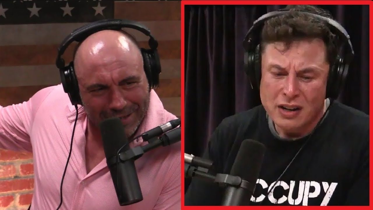 The Elon Musk Experience