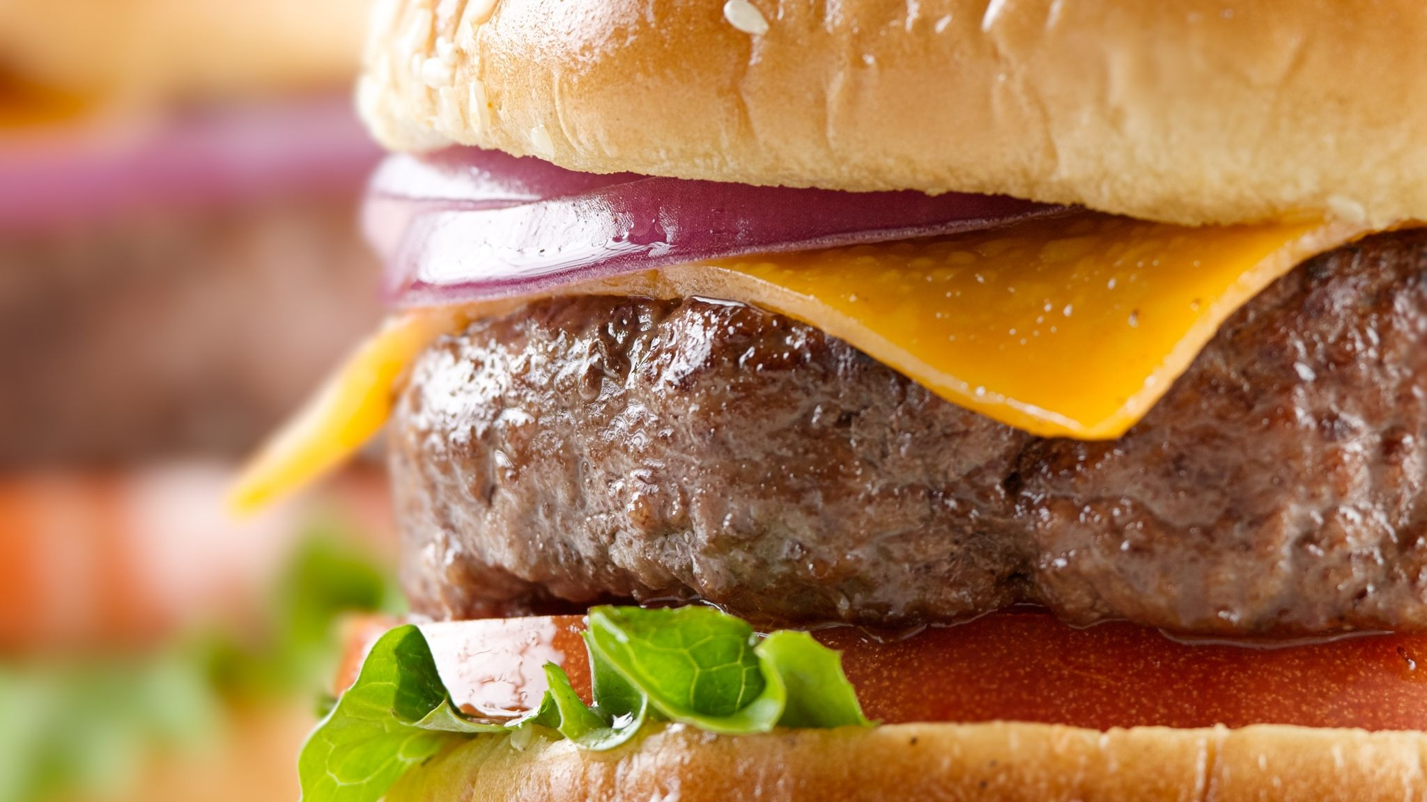 Top 10 Best Burger Chains in the US