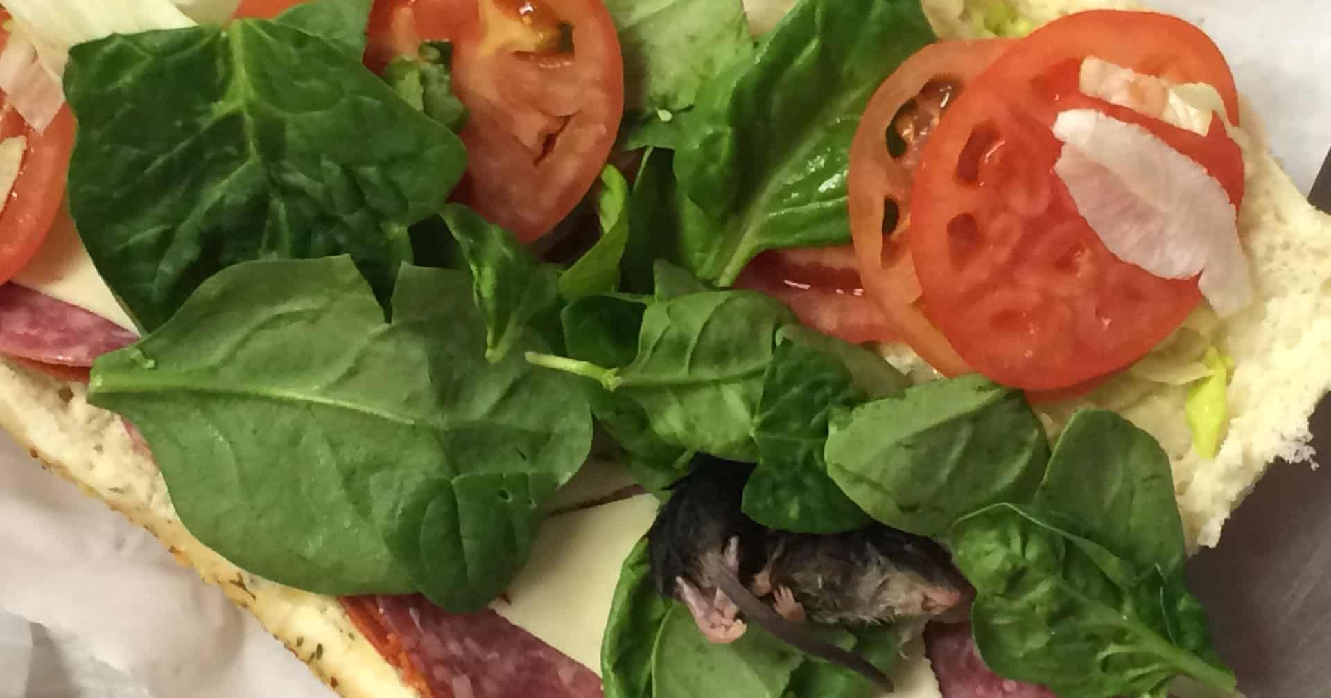 dead-rat-mcdonald's-salad