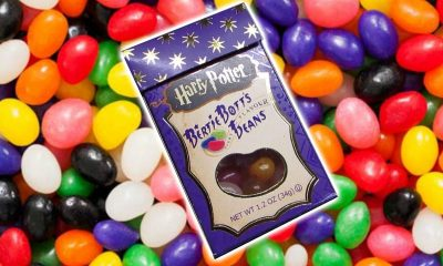 Fictional Foods bertie botts every flavour beans