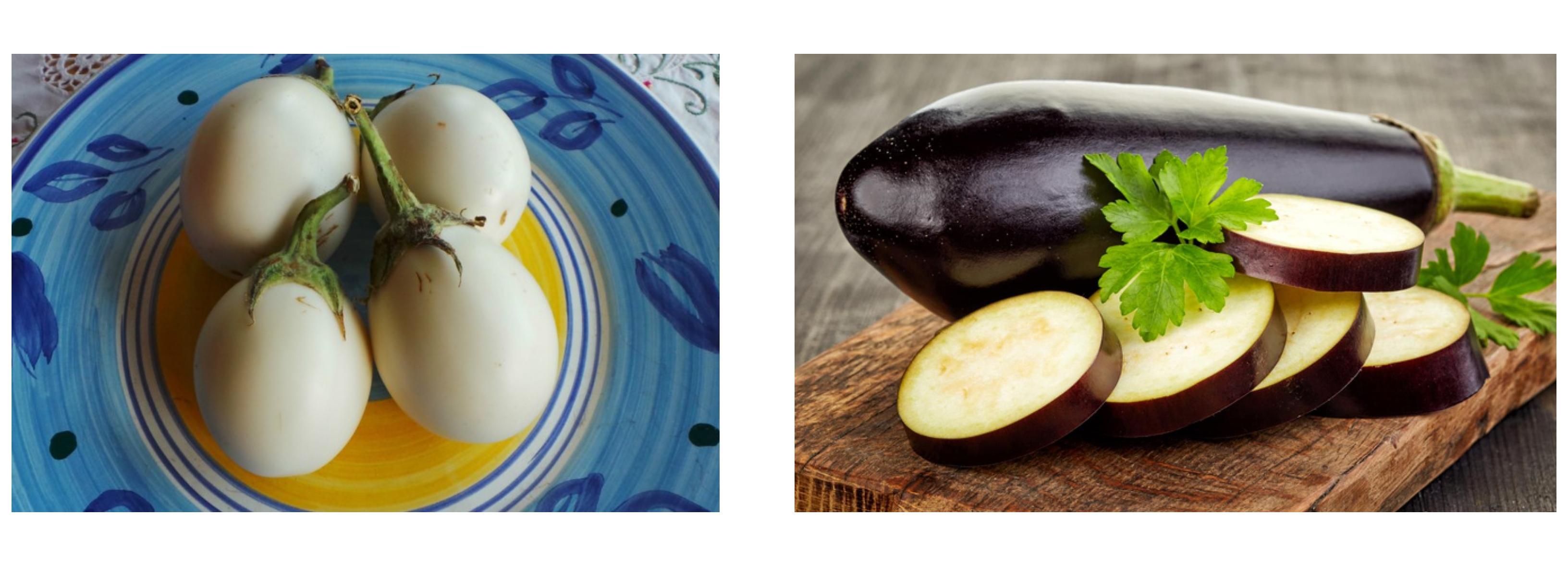 Old+new eggplant