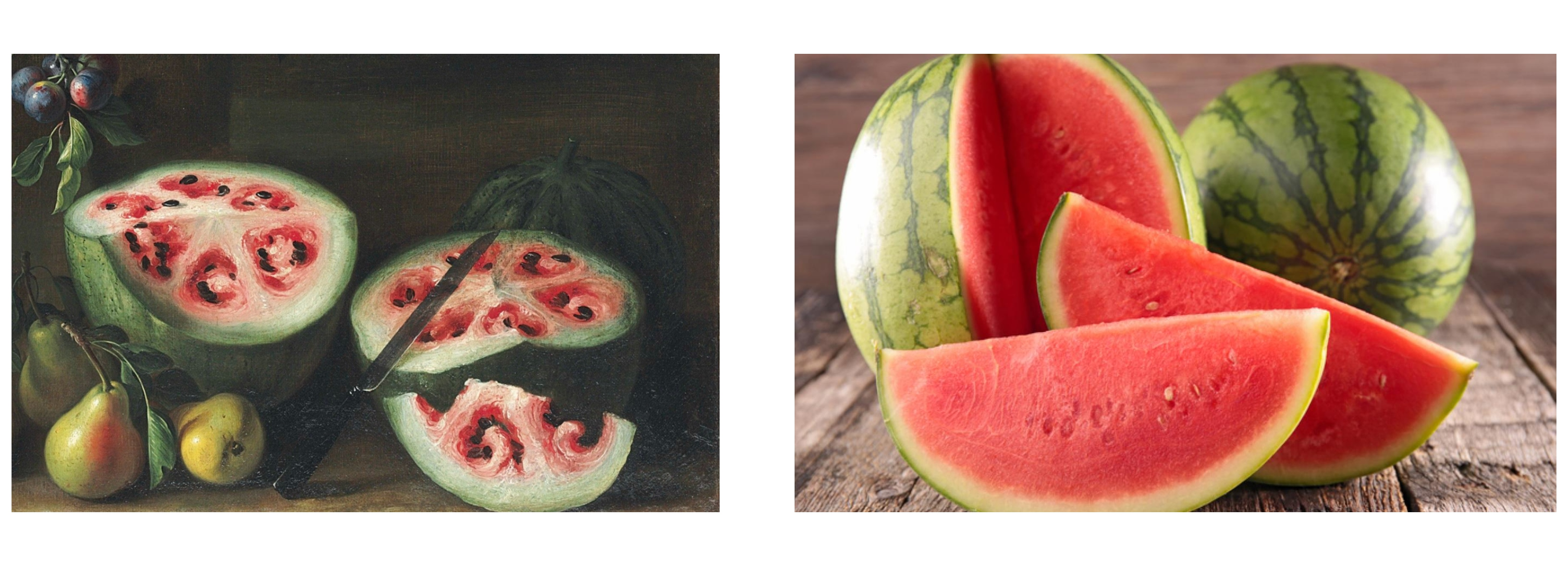 Old+new watermelon