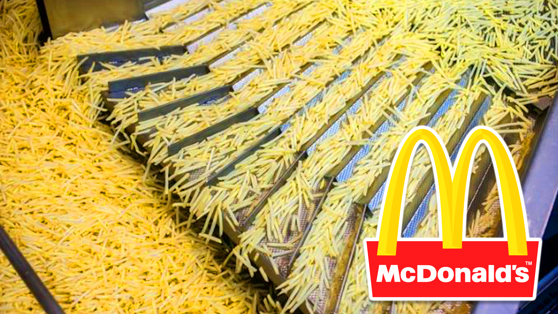 10 McDonalds Fries Secrets That You Would NEVER Have Known