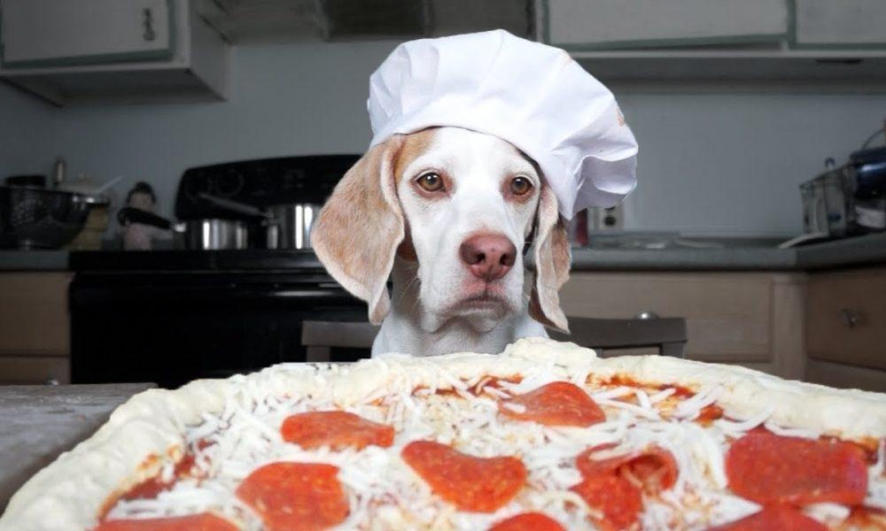 Top 10 Untold Truths of Chef Boyardee