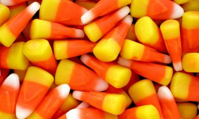 candy corn close up