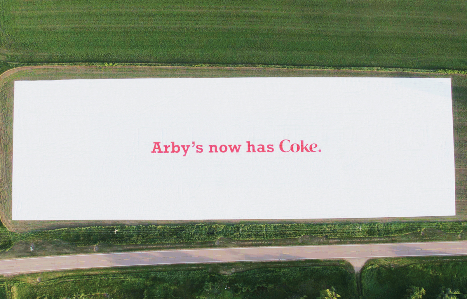 Arby's world's largest advertisement