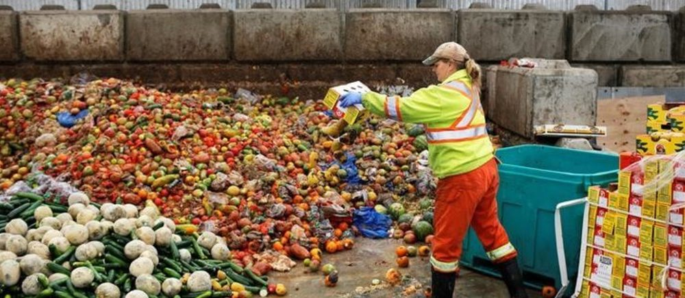 10 Food Waste Facts That Will Blow Your Mind