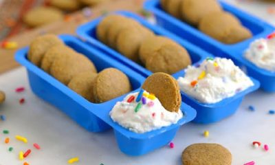 Dunkaroos with icing.